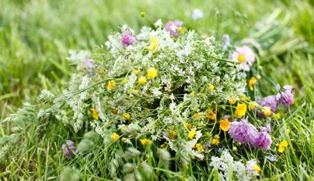 Idéias de arranjos florais de verão (1)