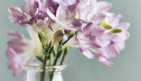 Idéias de arranjos florais de verão (2)